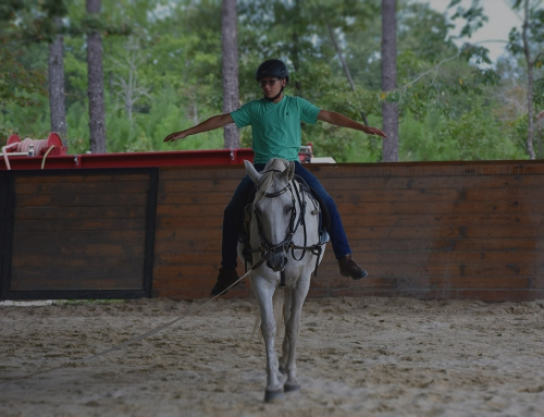 Rider Rehabilitation